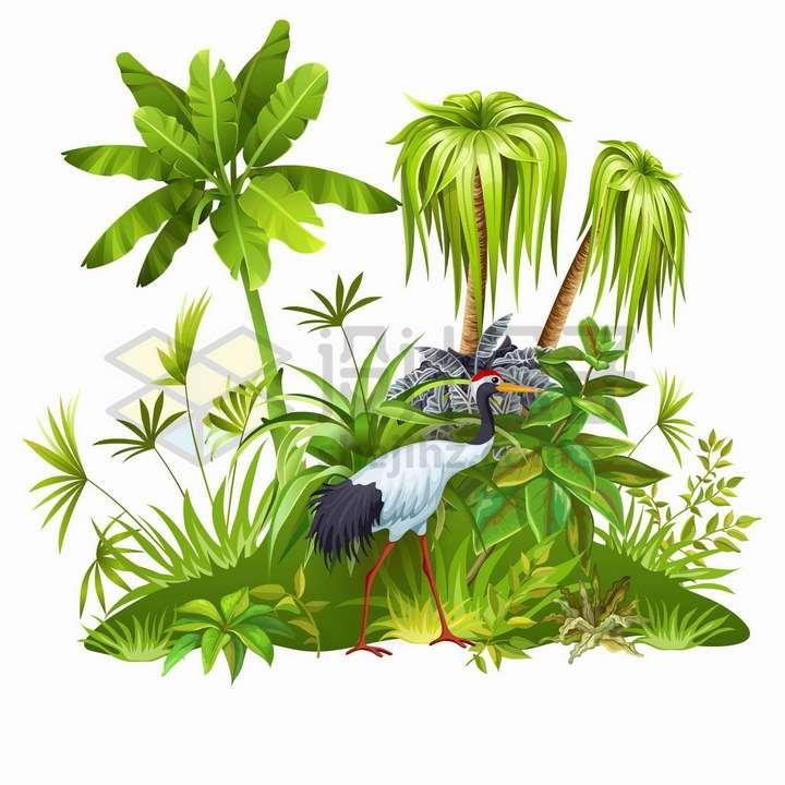 椰子树等热带树木灌木和仙鹤png图片免抠矢量素材