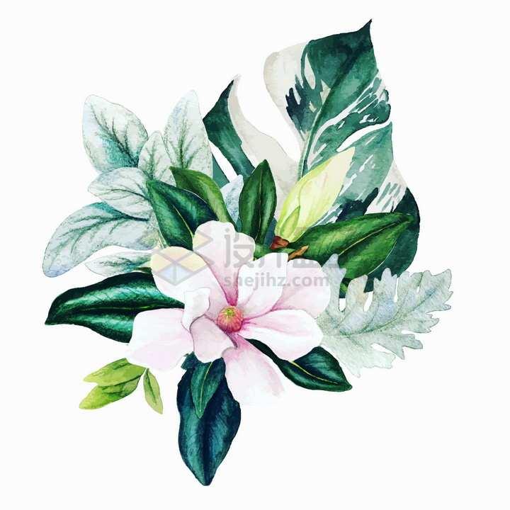 一束玉兰花鲜花花朵花卉和龟背竹水彩插画png图片素材