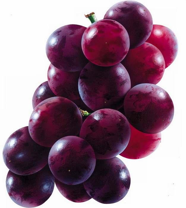 一串美国晚红葡萄png图片素材