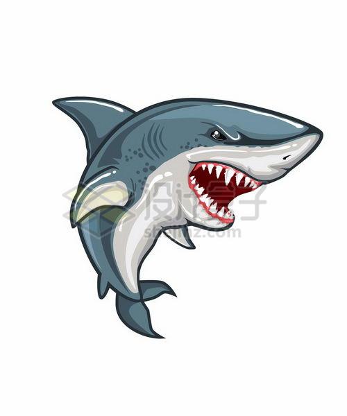 愤怒凶恶的卡通鲨鱼png图片免抠矢量素材 生物自然-第1张