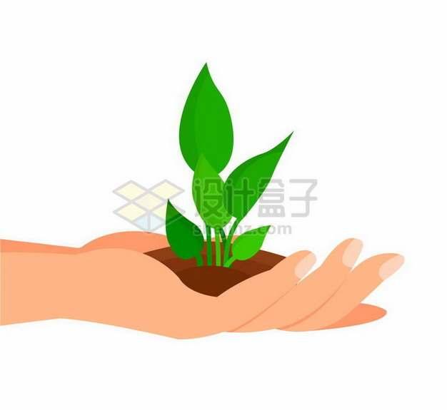 双手捧着的泥土中植物发芽png图片免抠矢量素材