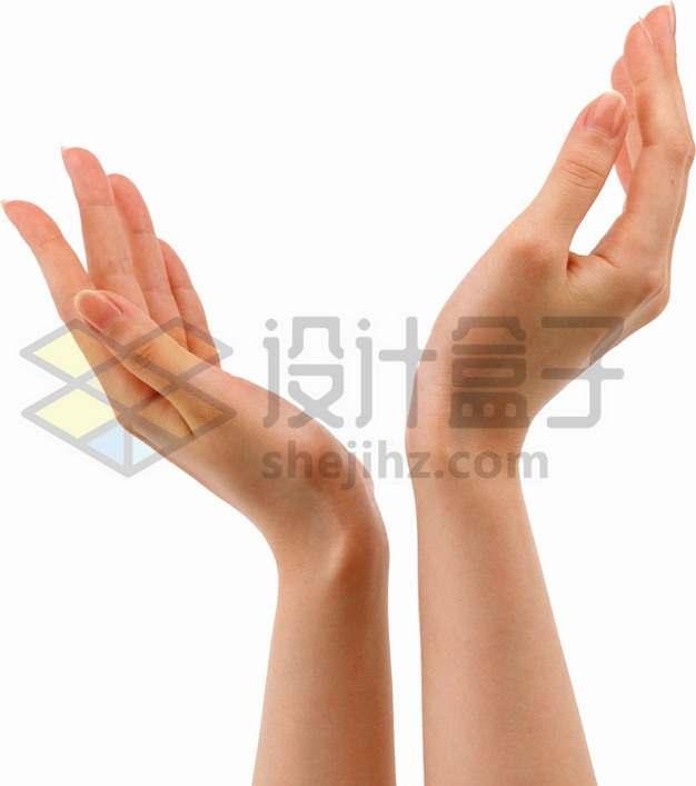 一双手摆出托举的优美动作png图片素材