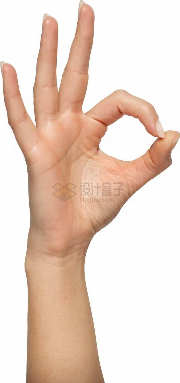 漂亮的手摆出OK手势姿势png图片素材
