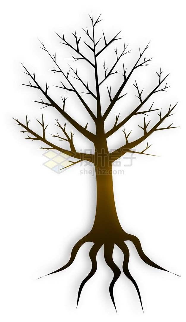 一棵带树根的参天大树png免抠图片素材