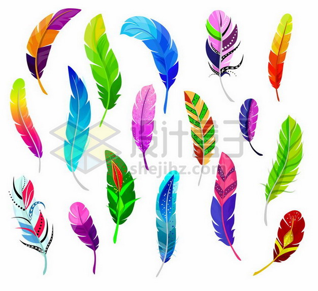 各种彩色图案的羽毛鸟毛png图片素材 漂浮元素-第1张