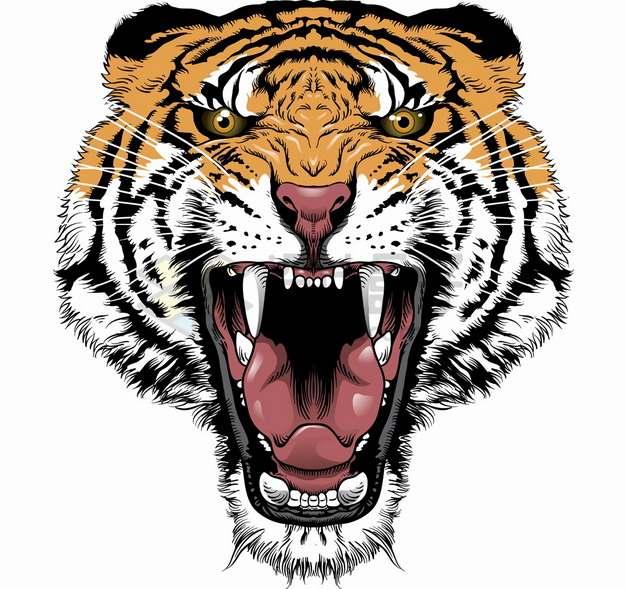 血盆大口吼叫的老虎头猛兽png图片素材