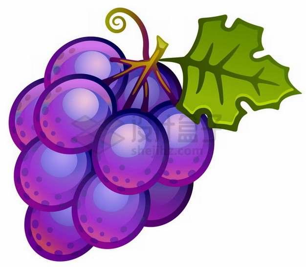 一串卡通紫葡萄png图片素材