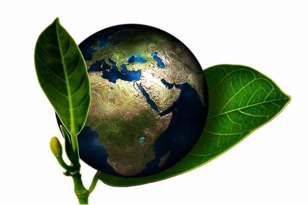 树叶上长出的地球世界环境日png图片素材