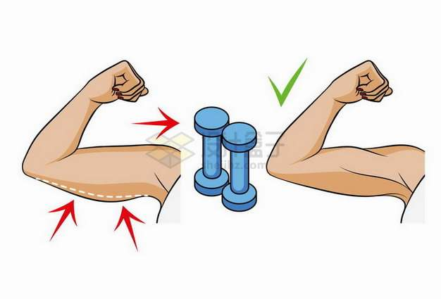 训练手臂肌肉肱二头肌的错误和正确的方法健身png图片素材