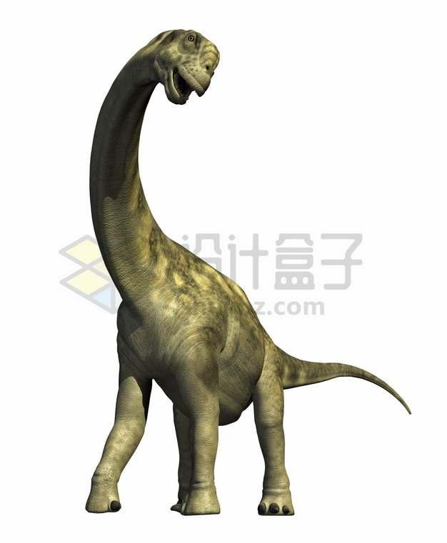 萌哒哒的腕龙恐龙复原图png图片免抠素材