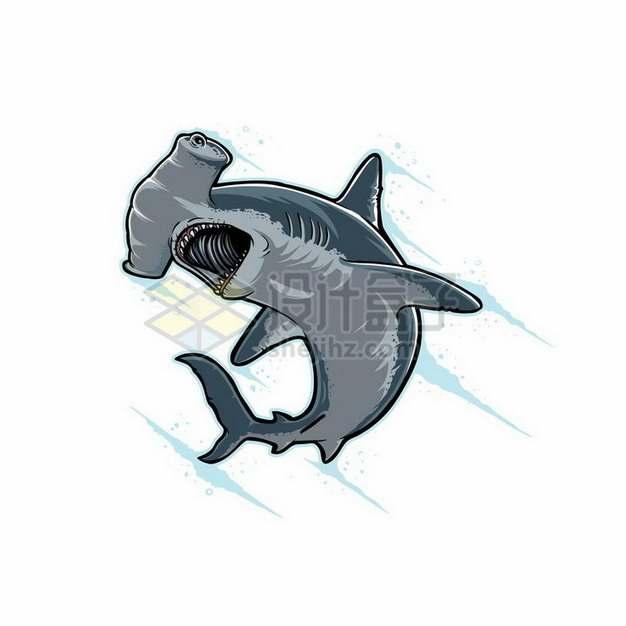 手绘卡通风格锤头鲨双髻鲨海洋动物鲨鱼png图片免抠矢量素材