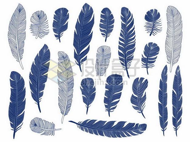 各种蓝色线条羽毛鸟毛png图片素材 漂浮元素-第1张
