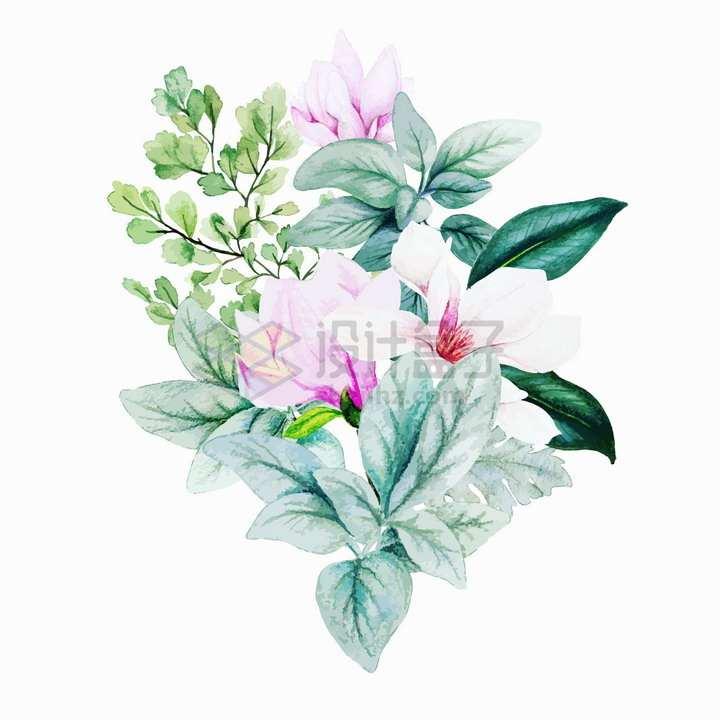 玉兰花花朵叶子和蕨类植物水彩画插画png图片素材