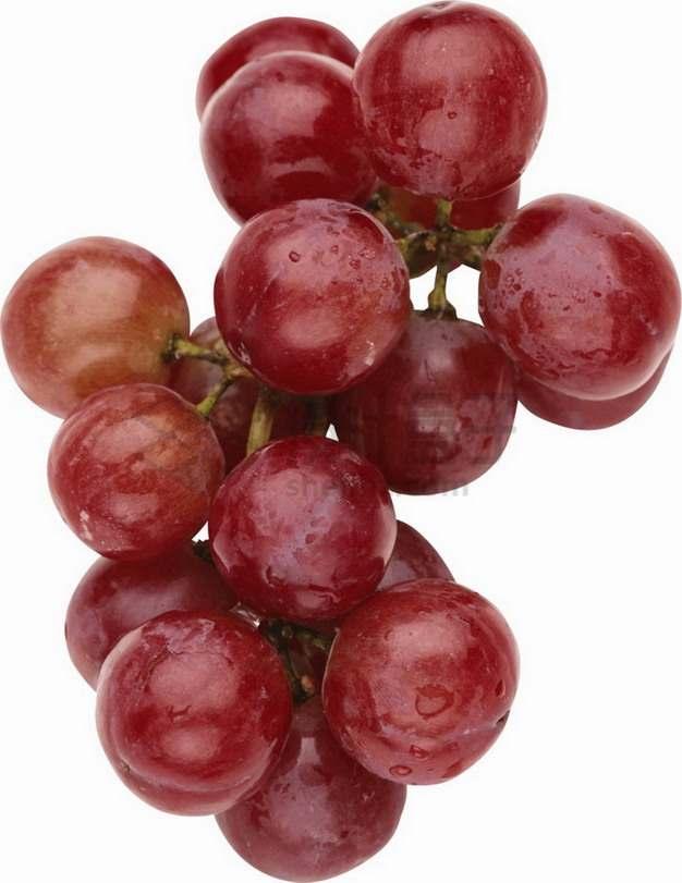 紫红色的早玫瑰葡萄png图片素材