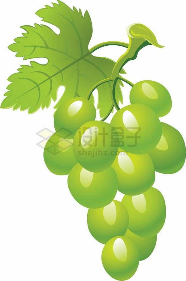 一串带叶子的青葡萄png图片素材