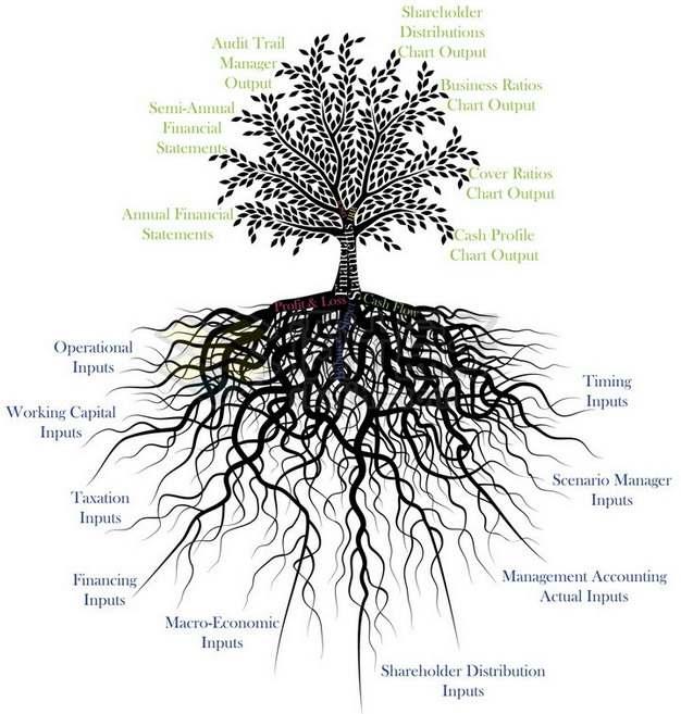 树根树冠各个部位名称png免抠图片素材