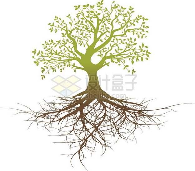 拥有发达树根的大树png免抠图片素材