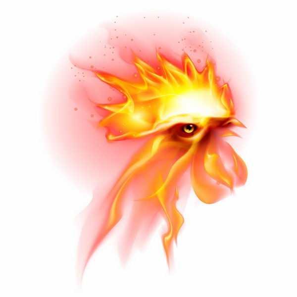 火焰组成的公鸡头火凤凰png图片免抠矢量素材