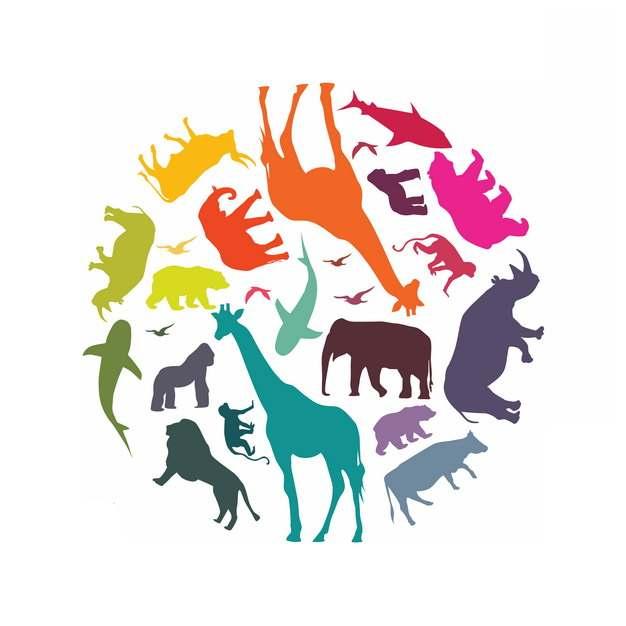 各种彩色野生动物剪影组成的圆球国际生物多样性日png图片素材