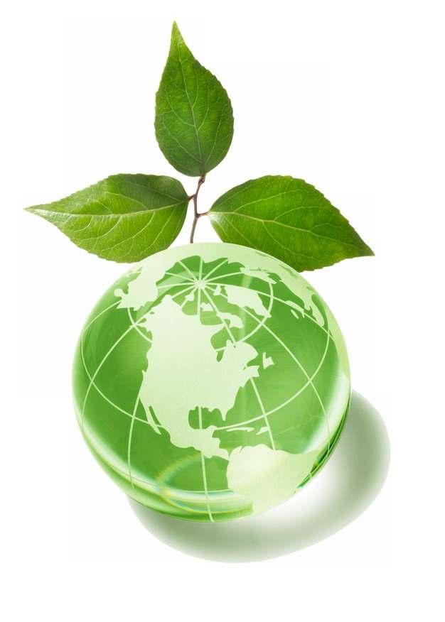 绿色地球和树叶国际生物多样性日png图片素材