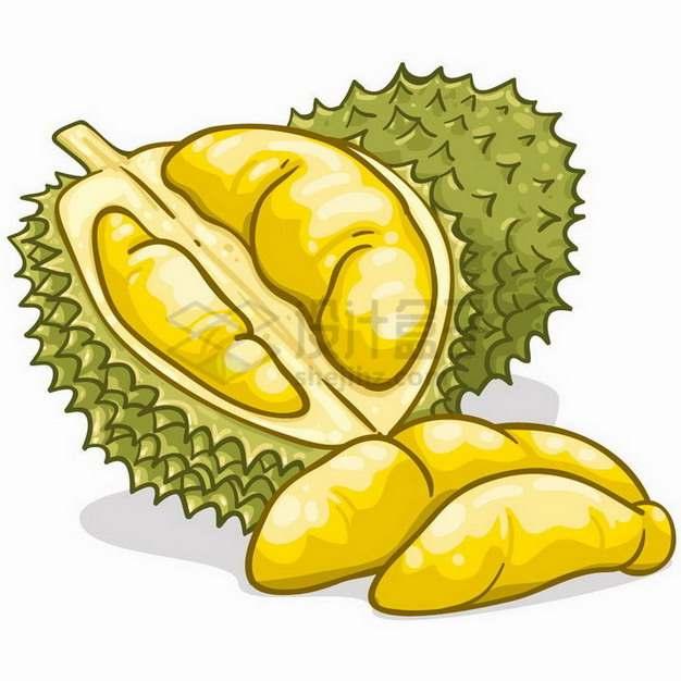 卡通手绘风格剥开的红肉榴莲水果之王png图片素材