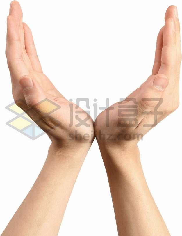 双手托举姿势动作png图片素材