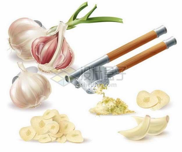 大蒜头和蒜泥剥开的大蒜美味调味品png图片免抠矢量素材