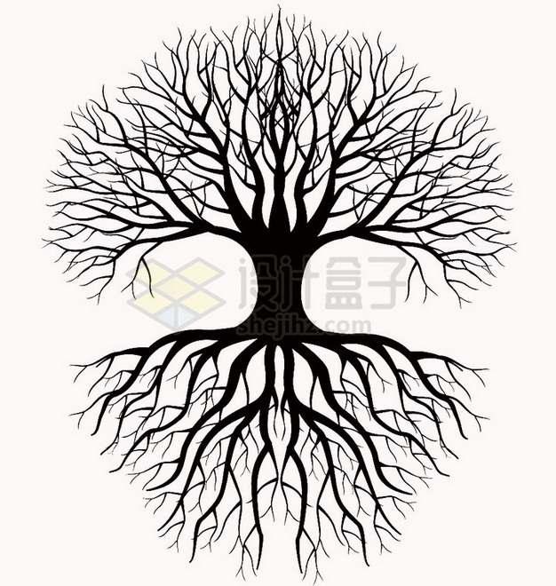 带树根光秃秃大树剪影png免抠图片素材