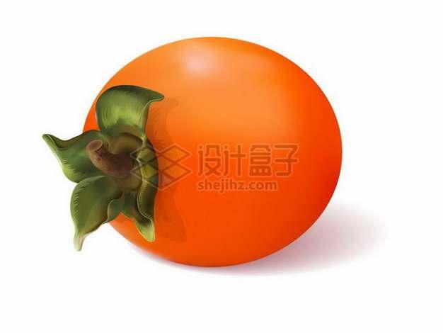 一颗火红的柿子美味水果png图片免抠矢量素材
