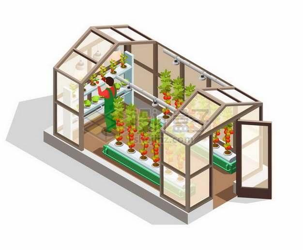 2.5D风格玻璃房中的温室种植技术png图片免抠矢量素材