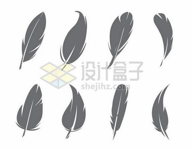 8款深灰色的羽毛图案png图片素材 漂浮元素-第1张