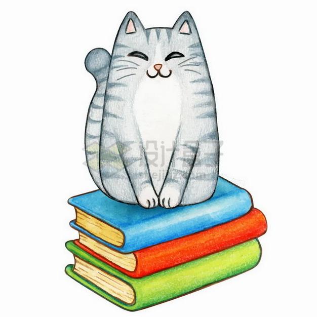 水彩画风格坐在书本上的狸花猫咪png图片免抠矢量素材 生物自然-第1张