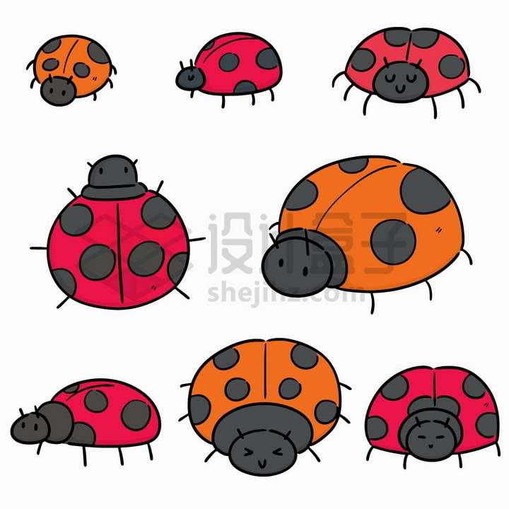 8款彩色七星瓢虫手绘简笔画png图片免抠矢量素材