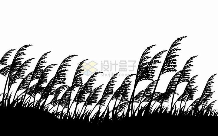 被风吹动的芦苇丛剪影png图片免抠矢量素材 生物自然-第1张