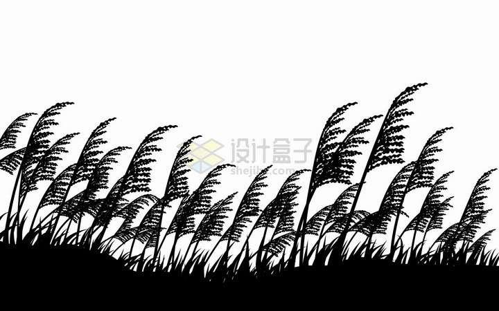 被风吹动的芦苇丛剪影png图片免抠矢量素材