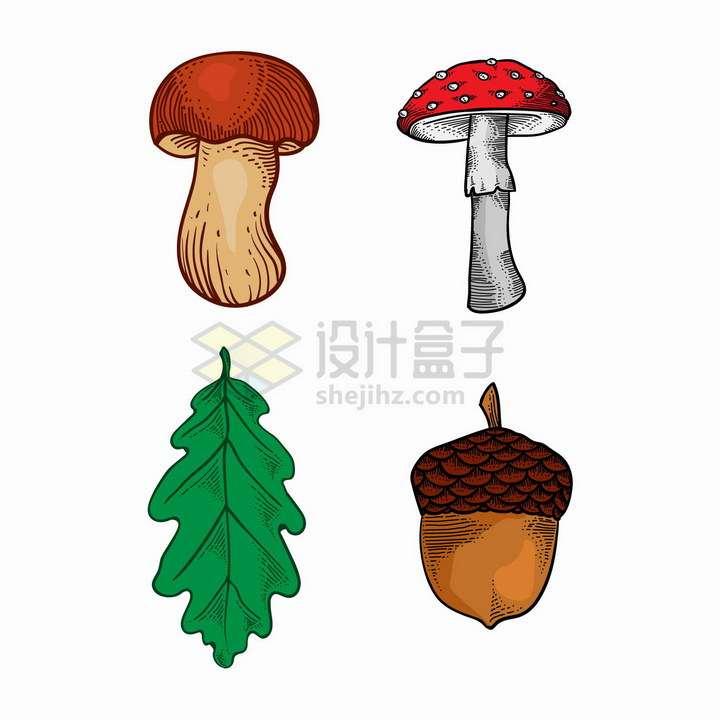 彩绘风格两种蘑菇和树叶松果png图片免抠矢量素材