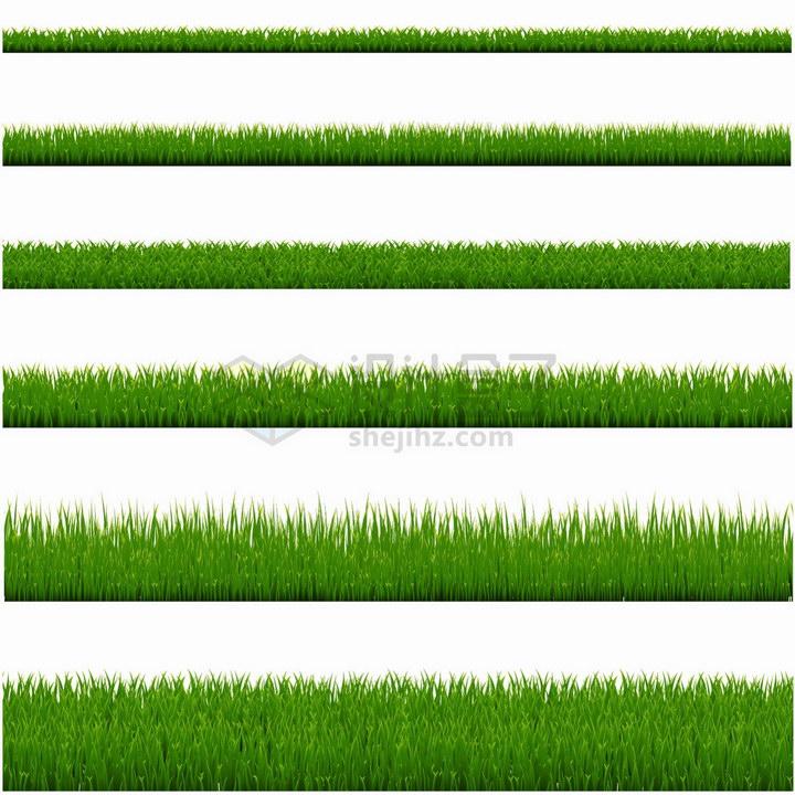 6款高度各不相同的青草地草丛png图片免抠矢量素材 生物自然-第1张