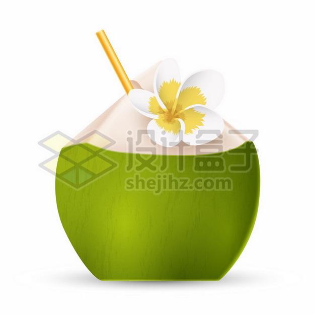 打开的椰子椰青png图片素材 生活素材-第1张