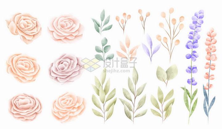 素雅风格玫瑰花花朵和叶子png图片免抠矢量素材 生物自然-第1张