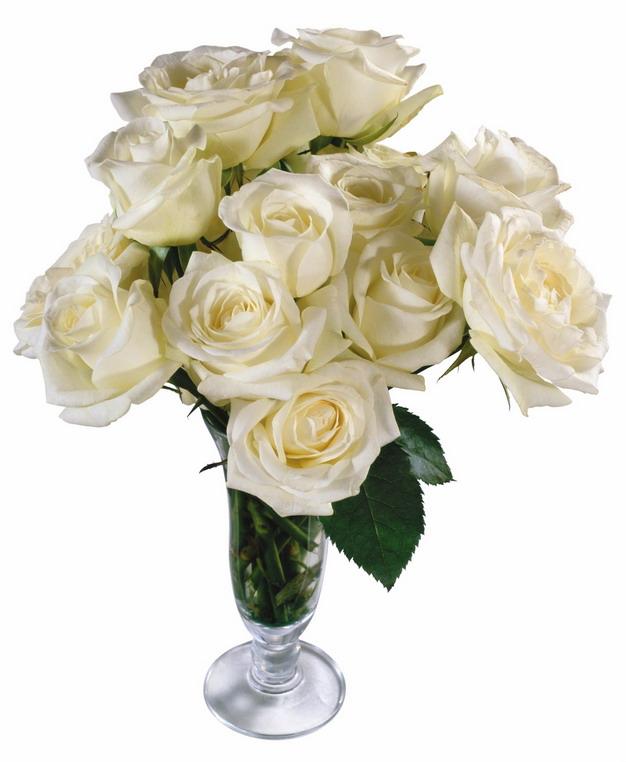 花瓶中的白玫瑰花鲜花977431png图片素材