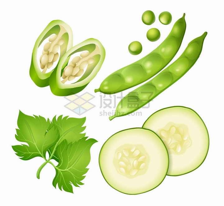 切开的青辣椒和黄瓜以及豌豆和香菜等美味蔬菜png图片免抠矢量素材