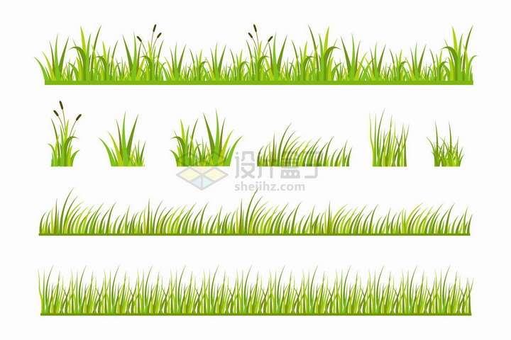 各种绿油油的青草地狗尾巴草从装饰png图片免抠矢量素材