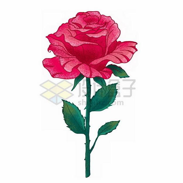 一朵玫瑰花彩绘插画655983png免抠图片素材 生物自然-第1张