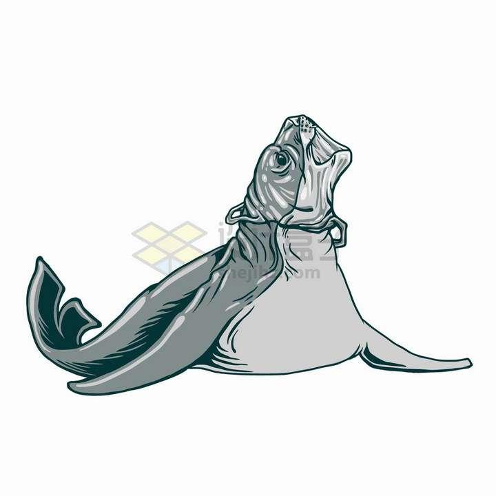 海豹头上套了一个塑料袋海洋垃圾污染保护环境png图片免抠矢量素材