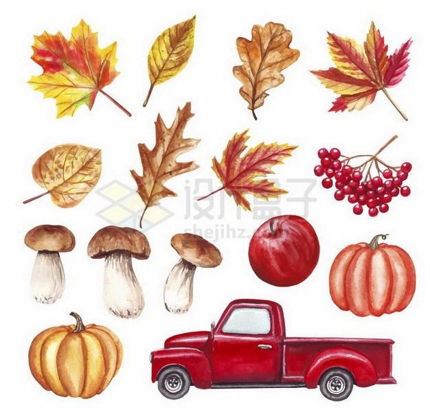 彩绘风格秋天里的枫叶蘑菇南瓜和红色皮卡汽车png图片免抠矢量素材 生物自然-第1张