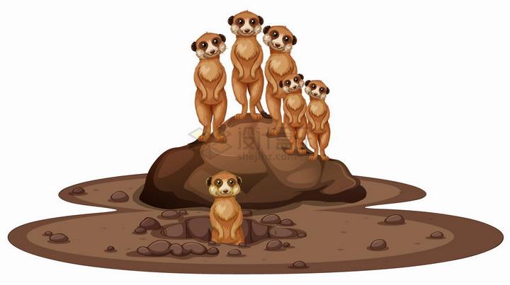 站在土堆上张望的猫鼬非洲大草原野生动物png图片免抠eps矢量素材 生物自然-第1张