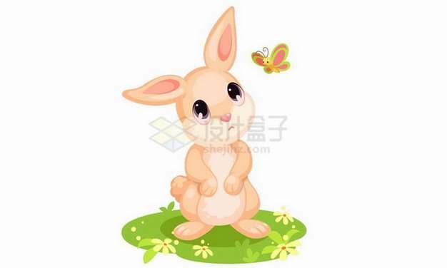 在草地上和蝴蝶嬉戏的卡通小兔子png图片免抠矢量素材