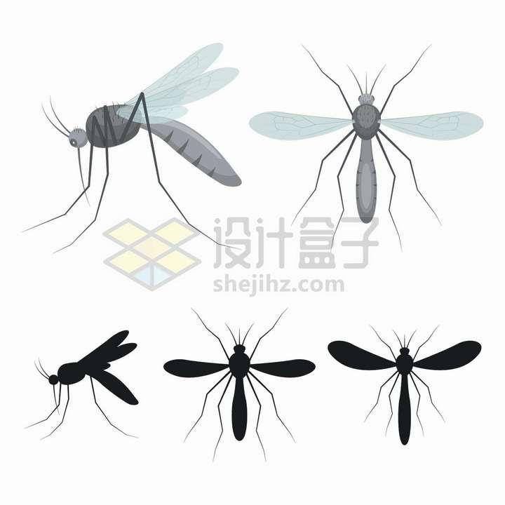 扁平插画风格蚊子和蚊子剪影小昆虫png图片免抠矢量素材