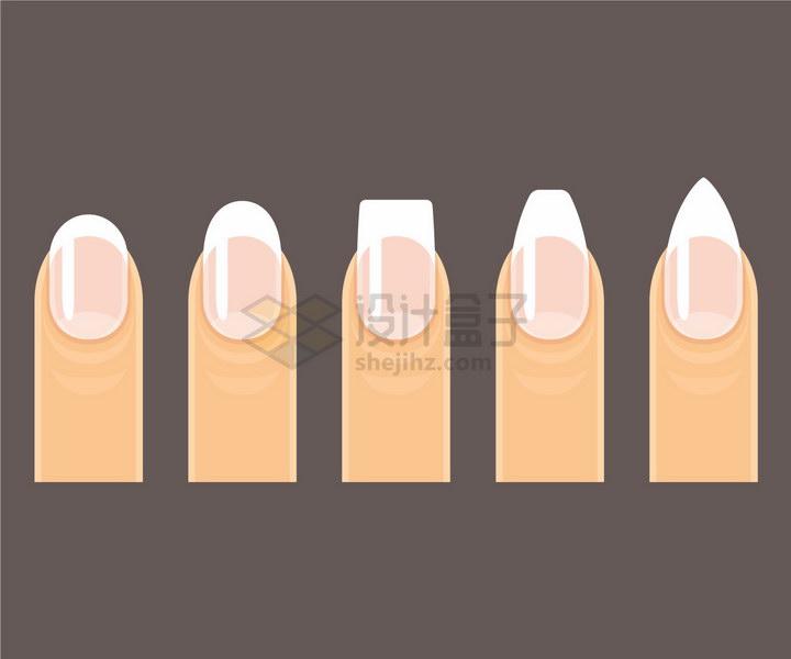 手指头上的不同形状的指甲png图片免抠矢量素材 生活素材-第1张