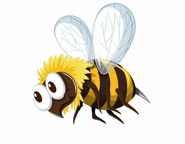 卡通小蜜蜂马蜂黄蜂298125png图片AI矢量图素材